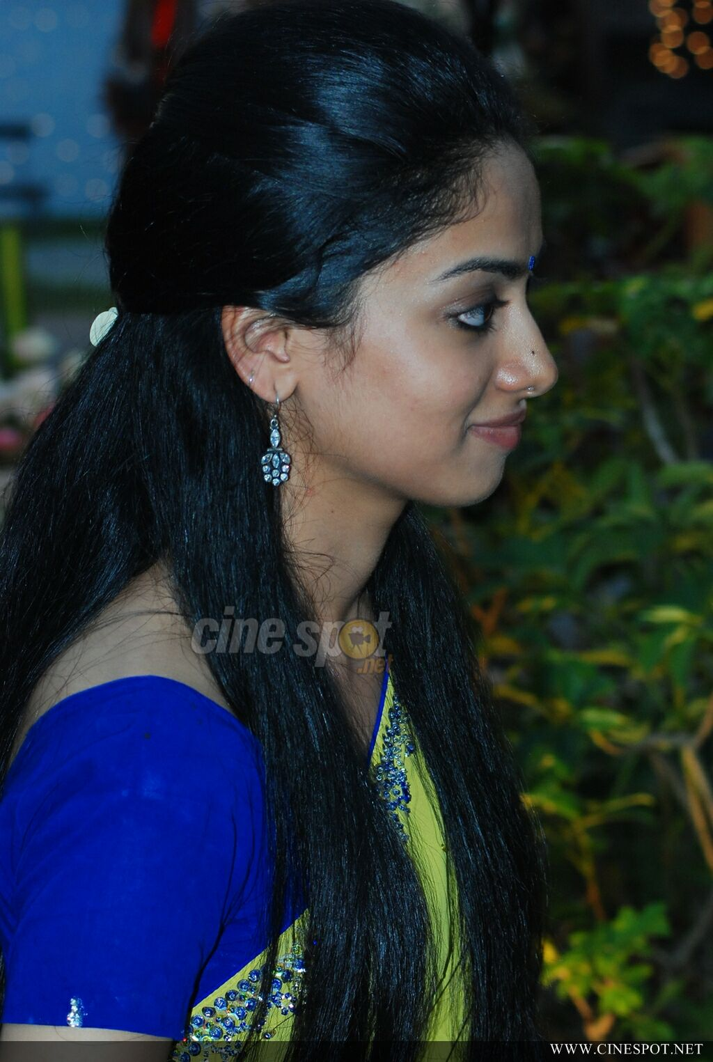 Gauthami Nair in saree photos (6)