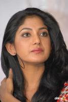 Yagna Shetty at Kwatle Press Meet (4)