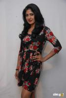 Yagna Shetty at Kwatle Press Meet (6)