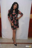 Yagna Shetty at Kwatle Press Meet (7)