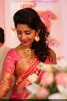 Meera Jasmine wedding  reception photos  (13)