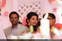 Meera Jasmine wedding  reception photos  (15)