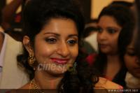 Meera Jasmine wedding  reception photos  (17)