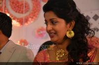 Meera Jasmine wedding  reception photos  (44)