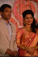 Meera jasmine reception photos (2)