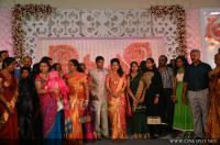 Meera jasmine reception photos (4)