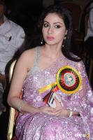 Sadha at Amma Young India Award 2014 (6)