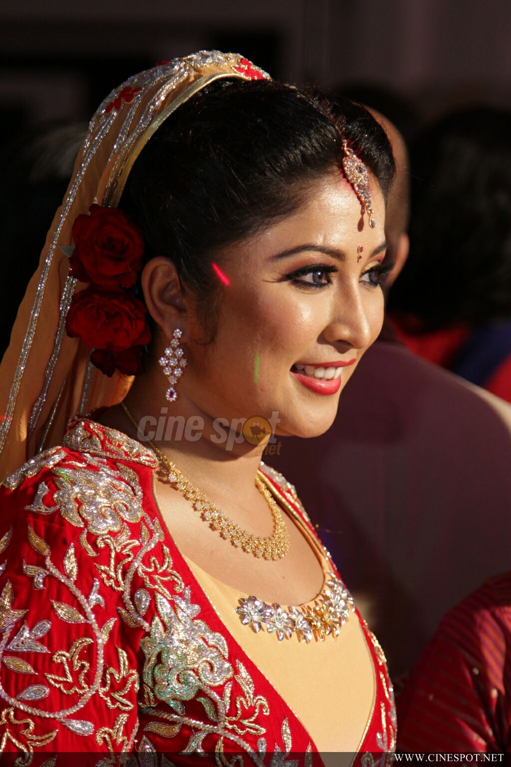 archana suseelan marriage reception photos 147