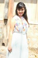 Archana Gupta at Aryan Film Press Meet (6)