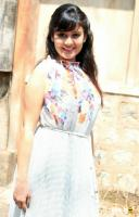 Archana Gupta at Aryan Film Press Meet (7)