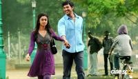 Dheerudu Movie New Photos (7)