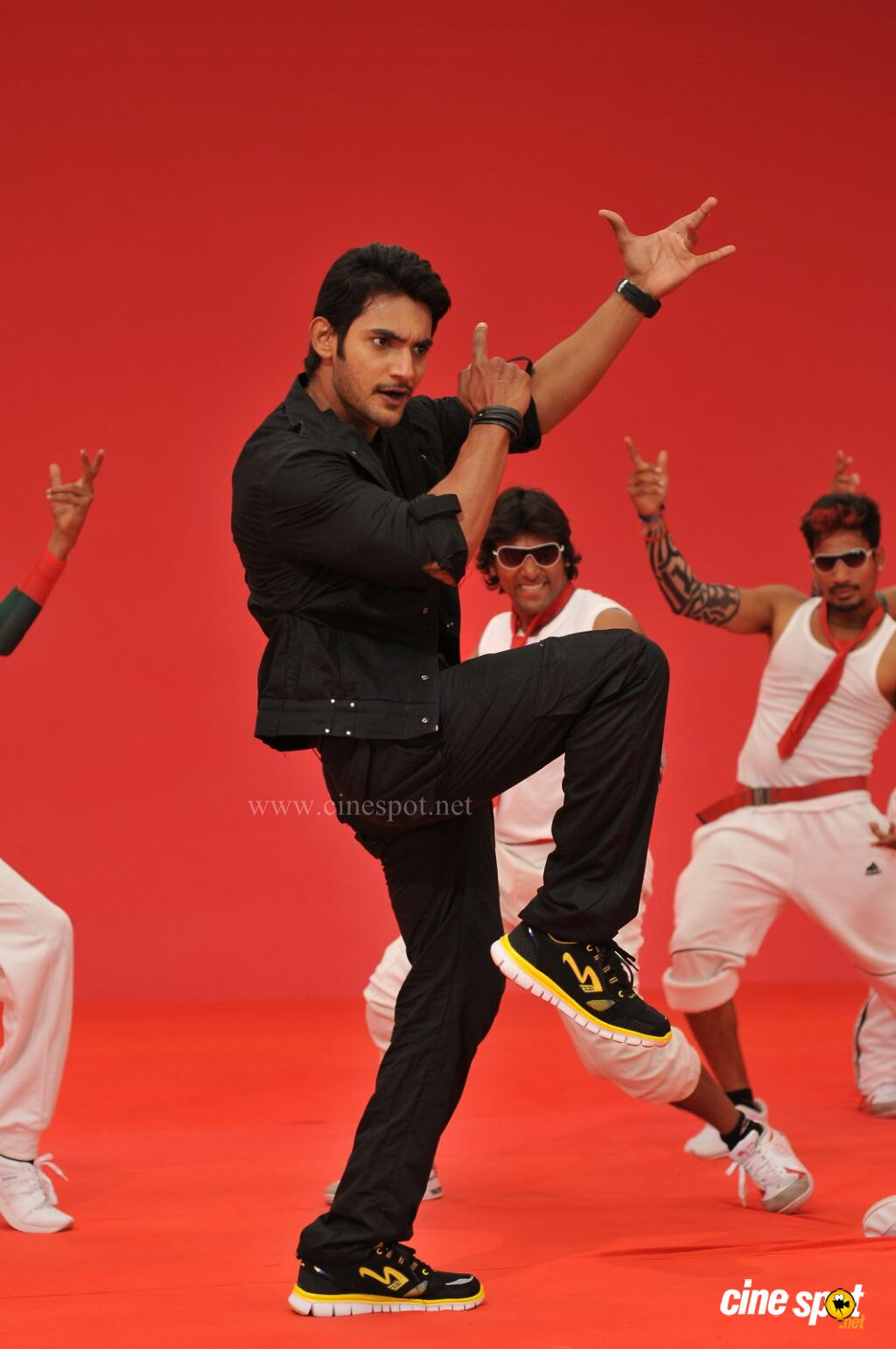 Aadi in Pyar Mein Padipoyane Photos (12)