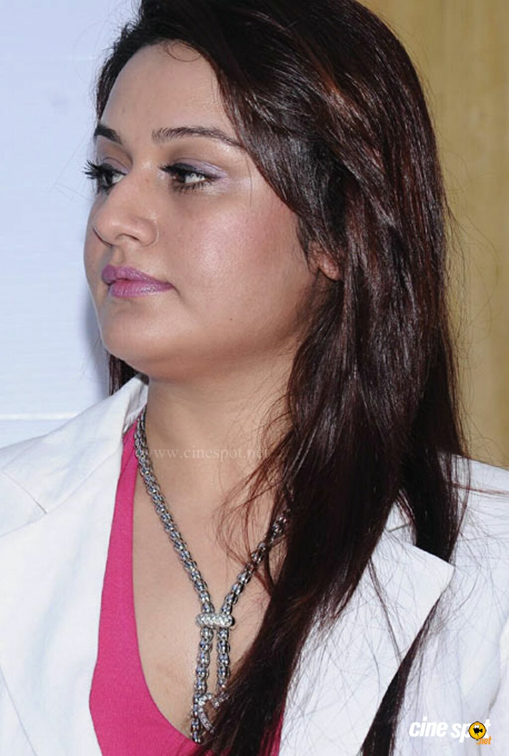 Sonia Agarwal naked (75 photos), Tits, Hot, Instagram, see through 2017