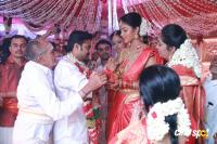Amala paul - AL Vijay marriage photos (2)