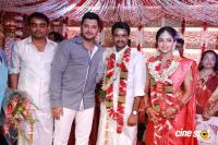 Amala paul wedding pics (18)