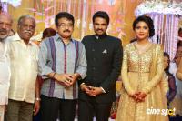 Amala paul reception pics (18)