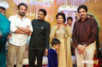 Amala paul reception pics (20)