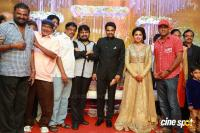 Amala paul reception pics (21)