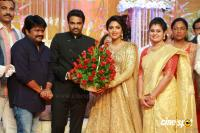 Amala paul reception pics (23)