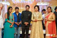 Amala paul reception pics (26)