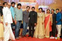 Amala paul reception pics (28)