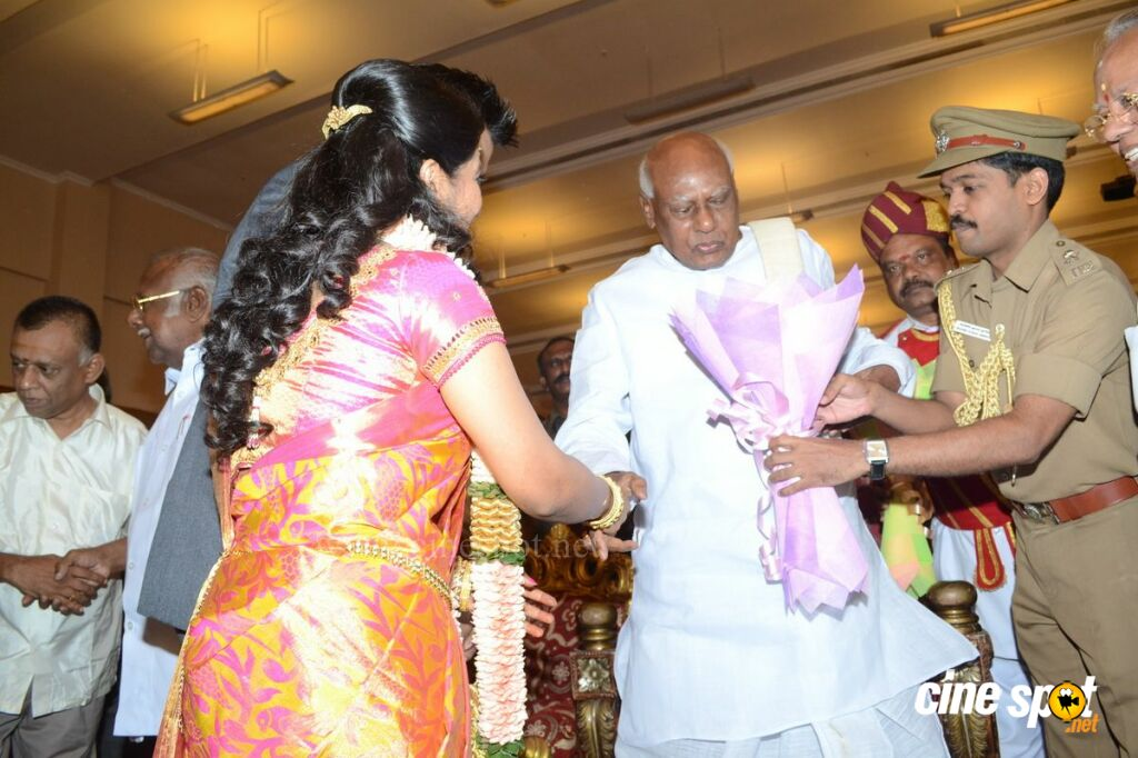 Palam Silks Daughter Reception Stills (15)