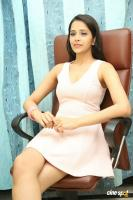 Abha Singhal Latest Photos (20)