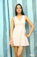 Abha Singhal Latest Photos (4)