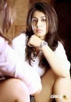 Nikki Galrani Latest Photo Shoot (11)