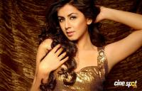 Nikki Galrani Latest Photo Shoot (15)