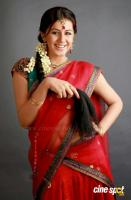 Nikki Galrani Latest Photo Shoot (3)