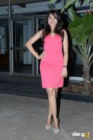 Andrea Jeremiah at Aranmanai Press Meet (14)