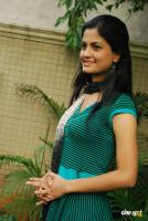 Madhulika South Actress Photos (9)