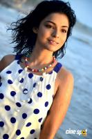 Actress Ankita Shrivastav Photos (17)