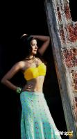 Actress Ankita Shrivastav Photos (8)