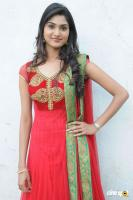 Teju Kannada Actress Photos