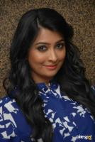 Radhika Pandit at Bahaddur Success Meet (4)