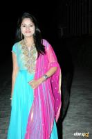 Suhasini at Rough Movie Audio Release (2)