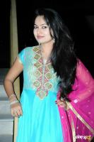 Suhasini at Rough Movie Audio Release (23)