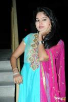 Suhasini at Rough Movie Audio Release (24)