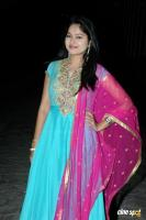 Suhasini at Rough Movie Audio Release (4)