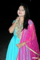 Suhasini at Rough Movie Audio Release (6)