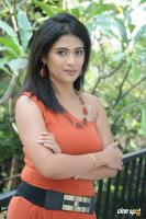 Richa Telugu Actress Photos