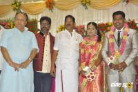 Sai Ramani's Daughter Weddding Reception (1)
