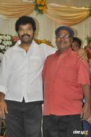 Sai Ramani's Daughter Weddding Reception (10)