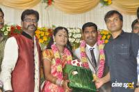 Sai Ramani's Daughter Weddding Reception (11)