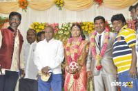 Sai Ramani's Daughter Weddding Reception (12)