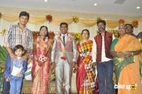 Sai Ramani's Daughter Weddding Reception (2)