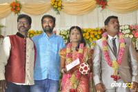 Sai Ramani's Daughter Weddding Reception (6)