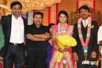 Raj TV MD Daughter Marriage Reception (12)